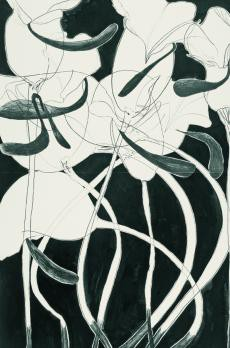 zwarte achtergrond, witte organische vorm met gebogen zwarte lijnen en zwarte lussen