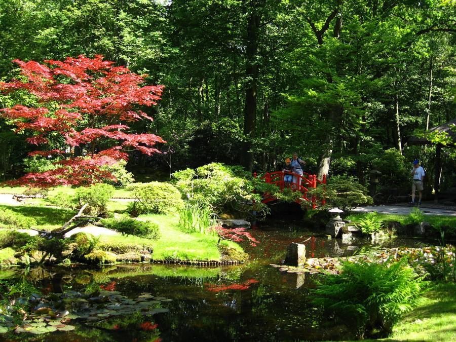 Den Haag – de Japanse tuin   if then is now