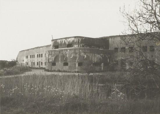 Grijs met wit bouwwerk, zwarte ramen, witte lucht, grijs met wit veld met bloemen