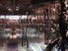 Natuurhistorisch Museum Brussel