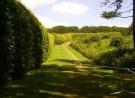 Groene gang geflankeerd door groene bomen